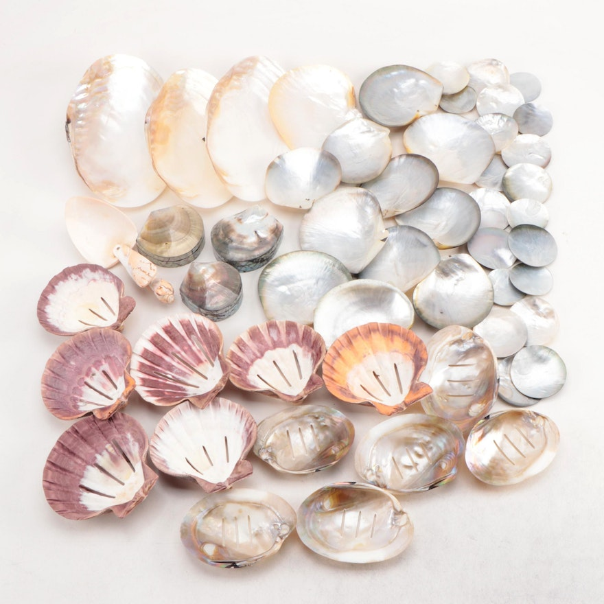 Handcrafted Abalone Shell Trinket Boxes and Other Shell Soap Dishes