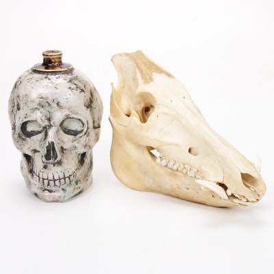 Vento Wine Ceramic Skull Decanter with Ungulate Skull