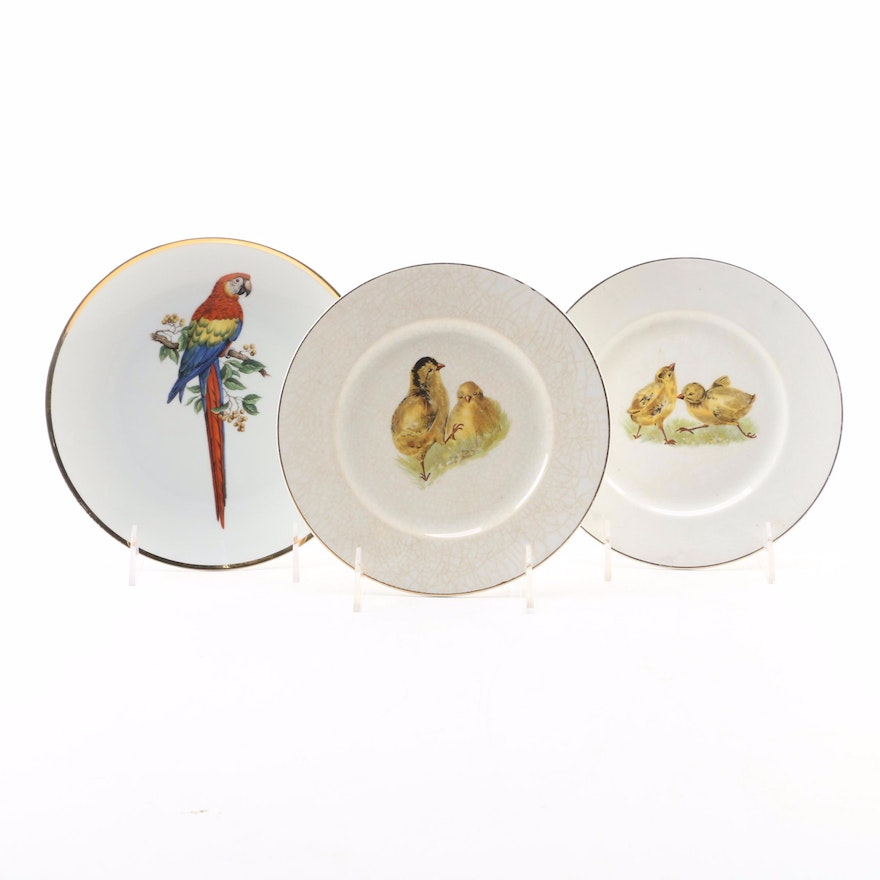 """Bareuther """"Macaw"""" Porcelain Plate with Other Ironstone Plates"""
