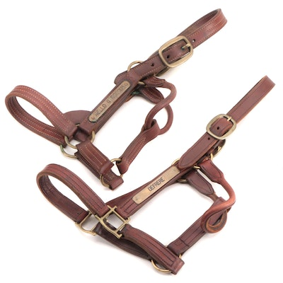 """Racehorses """"Hello Gorgeous"""" and """"DeFrere"""" Leather Turnout Halters, Brass Plates"""
