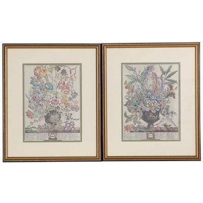 "Offset Lithographs after Robert Furber from ""Twelve Months of Flowers"""