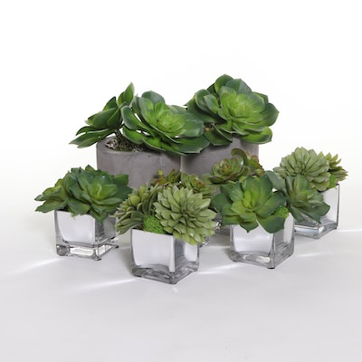 Artificial Succulents in Ceramic and Mirrored Glass Planters