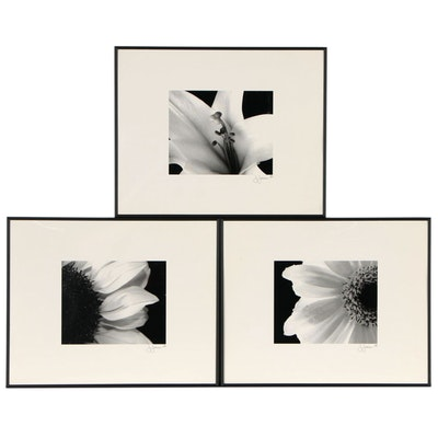 Offset Lithographs after Floral Photographs
