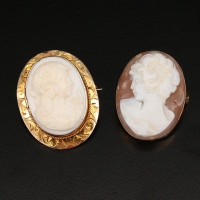 Vintage Carved 10K Conch Shell and 14K Shell Cameo Brooches