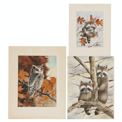 George R. Strum Watercolor Paintings of Raccoons and Owl