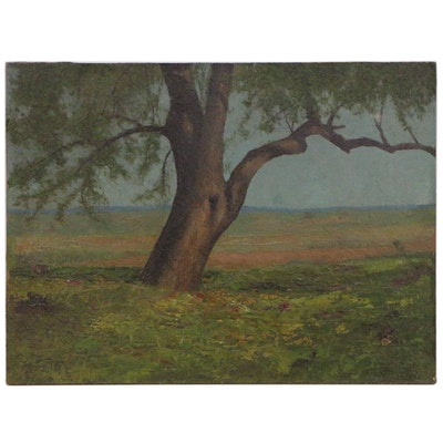 Landscape Oil Painting of Tree in Meadow, 20th Century