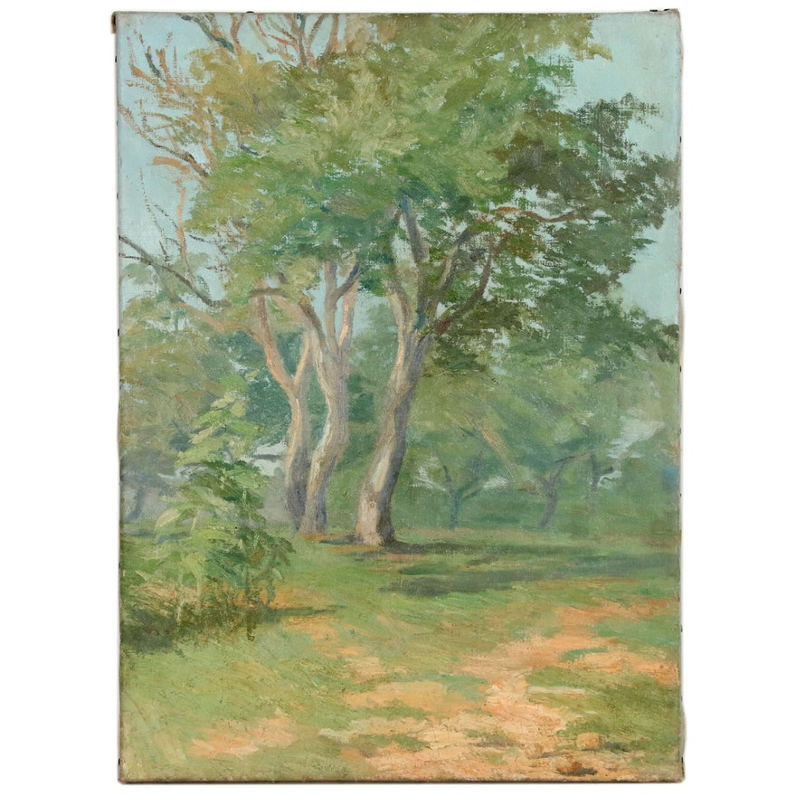 Landscape Oil Painting of Grove of Trees