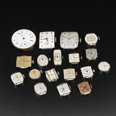 Collection of Stem Wind Watch Movements