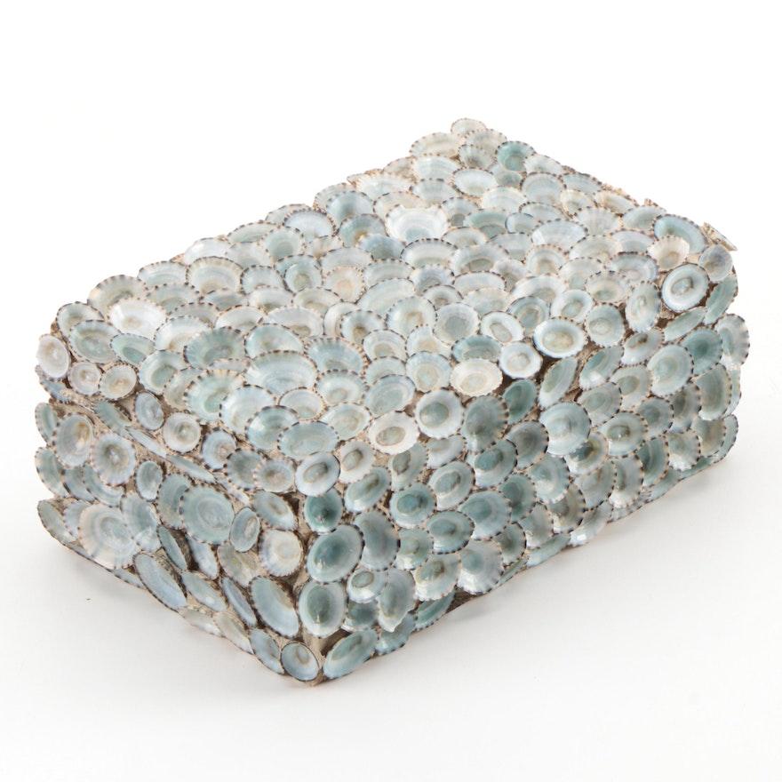 Limpit Seashell Encrusted Hinged Box