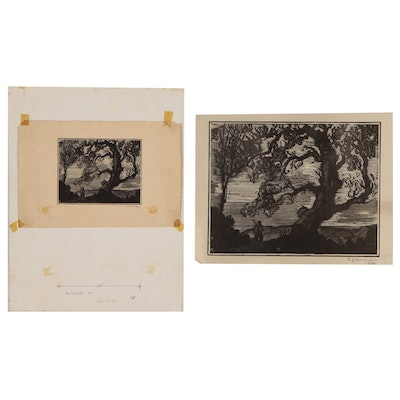 Joseph Di Gemma Wood Engraving of Tree, 1928, and Enlarged Photo Reproduction