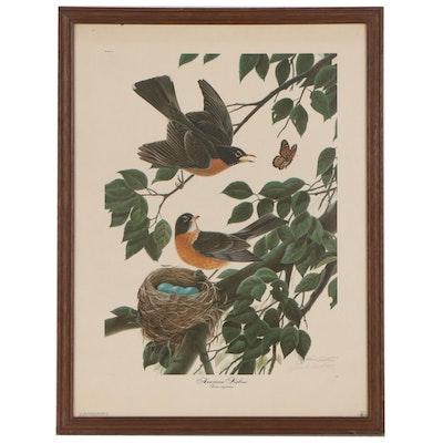 "John Ruthven Offset Lithograph ""American Robins"", 1971"