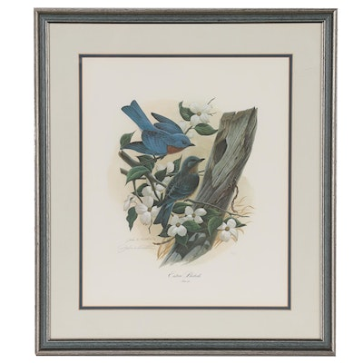 "John A. Ruthven Offset Lithograph ""Eastern Bluebirds"", Late 20th Century"