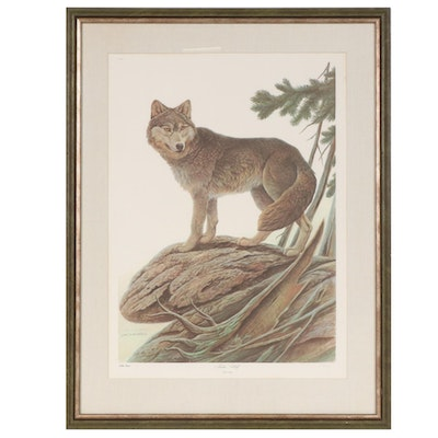 "John A. Ruthven Offset Lithograph ""Timber Wolf"""