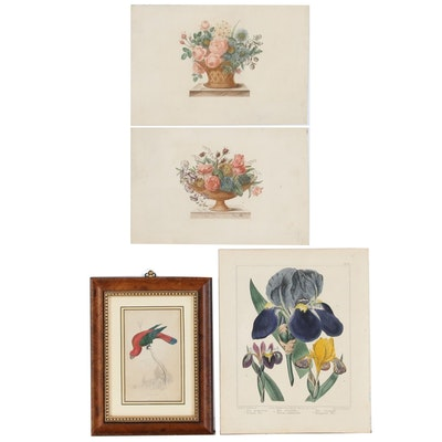 Floral Hand-Colored Engravings of Flowers and Birds