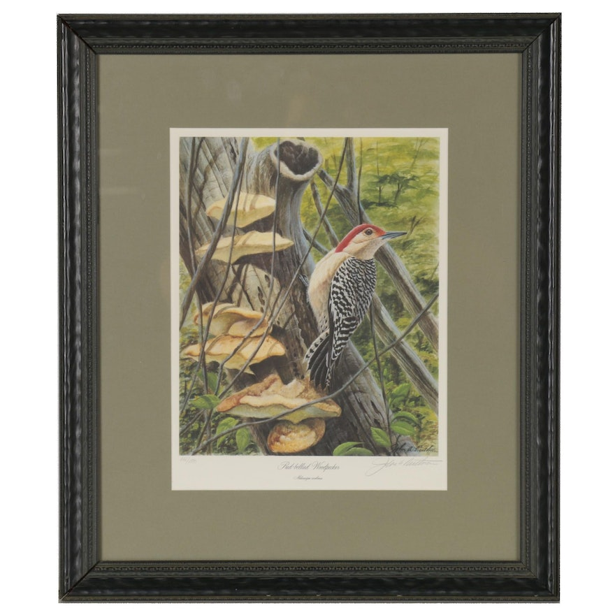 "John Ruthven Offset Lithograph ""Red-Bellied Woodpecker,"" 21st century"