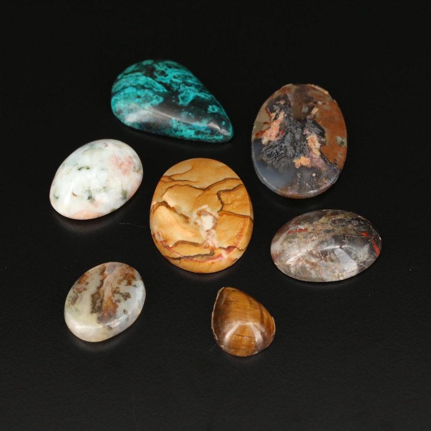 Loose Gemstones Including Jasper, Tiger's Eye and Agate Cabochons