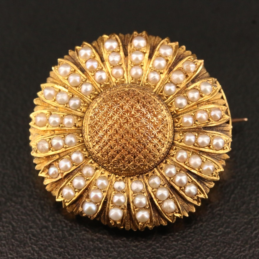 Victorian 18K Seed Pearl Daisy Motif Mourning Brooch