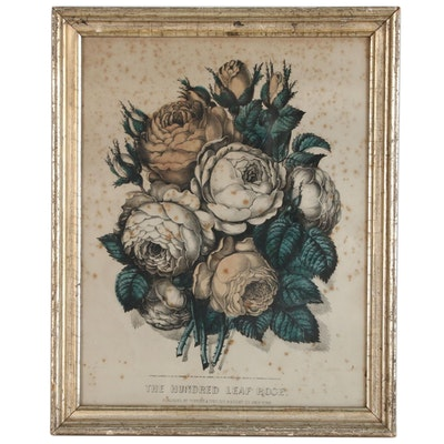 """Currier & Ives Floral Hand-Colored Lithograph """"The Hundred Leaf Rose"""", 1870"""