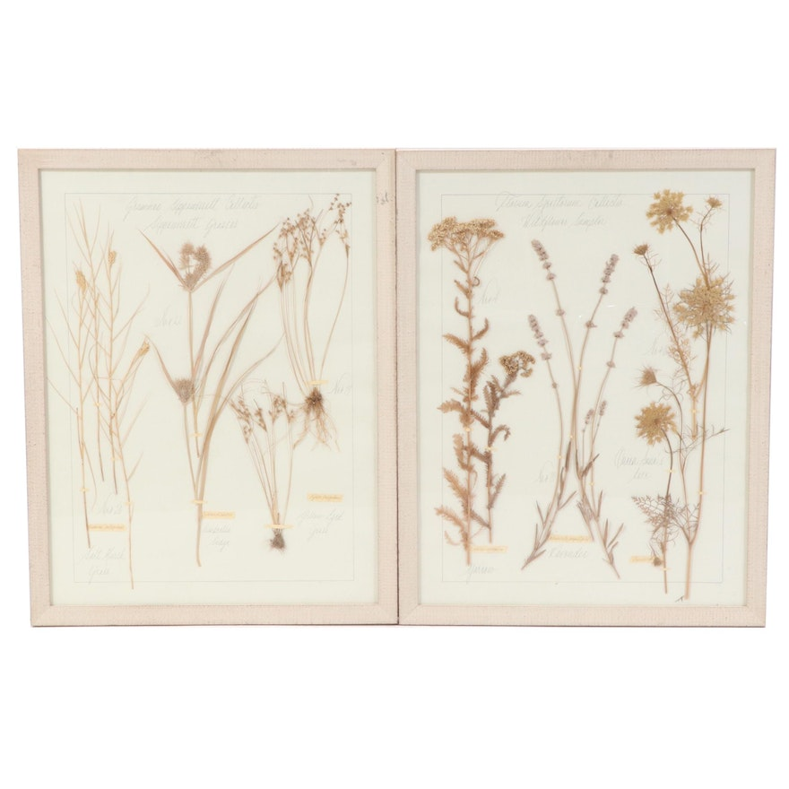 Kristina Fine Pressed Botanicals in Wood Frames