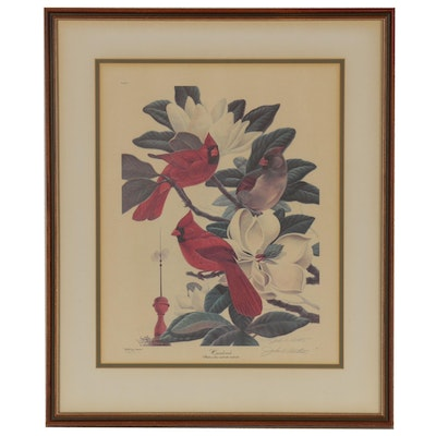 "John A. Ruthven Offset Lithograph ""Cardinals"", Late 20th Century"