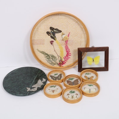Taxidermy Butterfly Display Collection Including Tray and Coasters