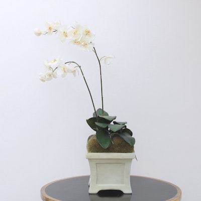 Potted Artificial White Orchid