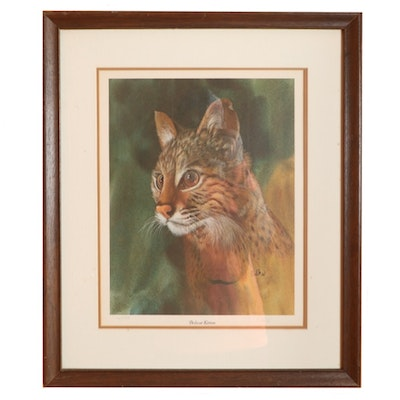 "Don Balke Offset Lithograph ""Bobcat Kitten"""