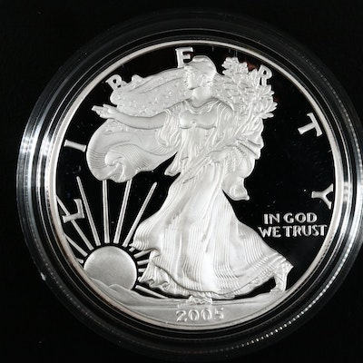2005-W American Silver Eagle $1 Proof Bullion Coin