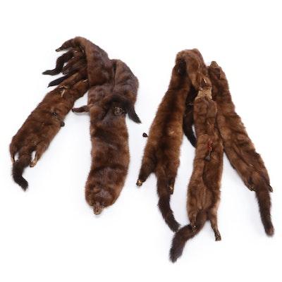 Mink Fur Pelt Stoles for Lowenthal's, Vintage