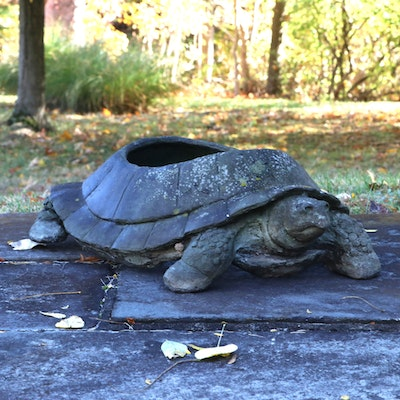 Open-Back Outdoor Turtle Planter