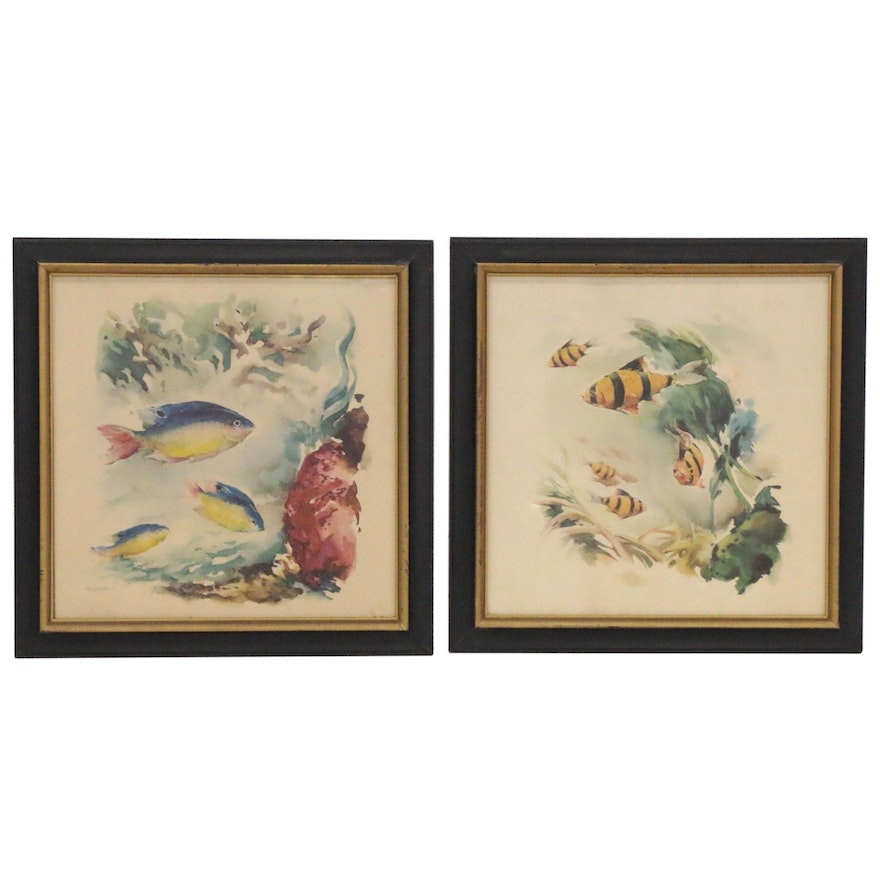 Offset Lithographs after Watercolor Paintings of Fish, 21st Century