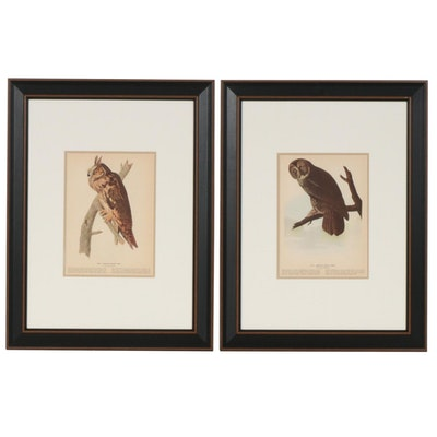 "Offset Lithographs after J. J. Audubon ""Birds of America"" Series, 20th Century"
