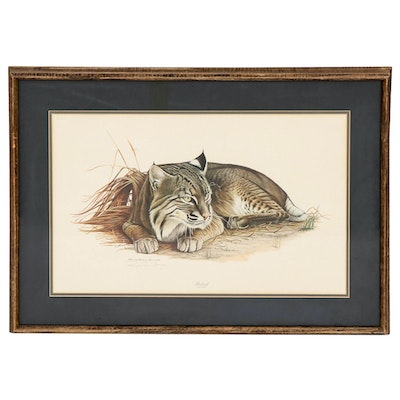 "Richard Evans Younger Offset Lithograph ""Bobcat"""