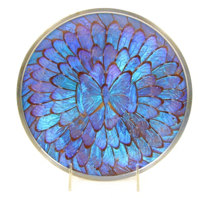 Morpho Didius Butterfly Wing Display Plate, Mid-Late 20th Century