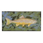 "George McElveen Wildlife Art Acrylic Painting ""Brown Trout,"" 2020"