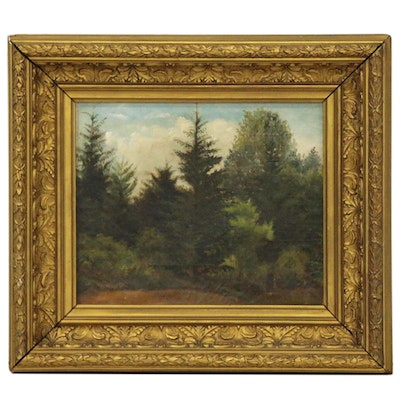 Forest Landscape Oil Painting, Mid 20th Century