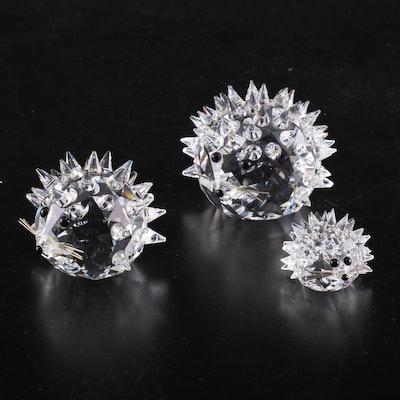 Three Swarovski Crystal Hedgehog Figurines
