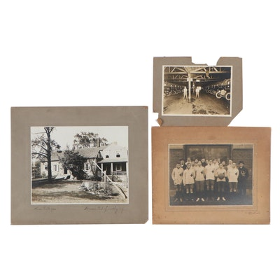 Silver Print Photographs, Early 20th Century