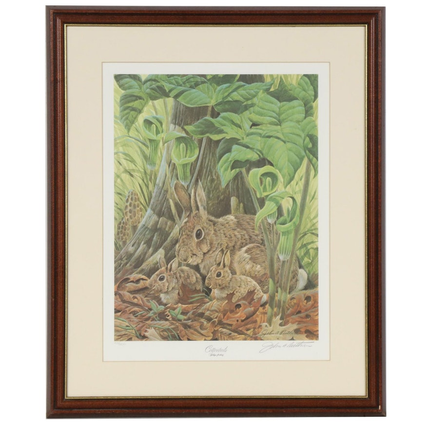 "John A. Ruthven Offset Lithograph ""Cottontails"""