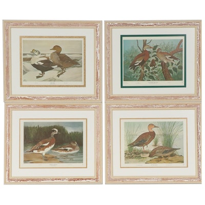 Water Fowl Offset Lithographs after Rex Brasher, Mid to Late 20th Century