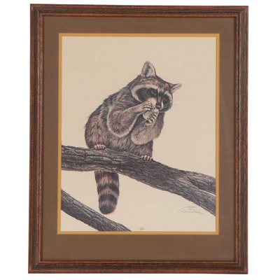 W. D. Gaither Offset Lithograph of Raccoon, Late 20th Century