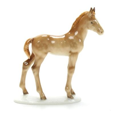 Hutschenreuther Selb Porcelain Colt Figurine