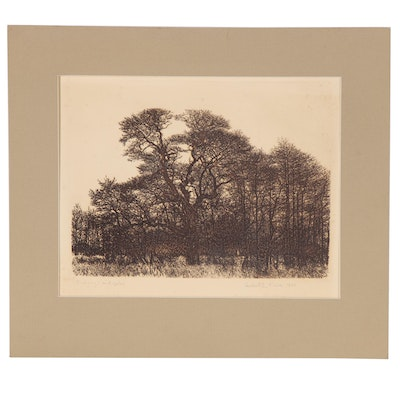 """Herbert Lewis Fink Etching """"Hickorys and Oaks"""", 1986"""