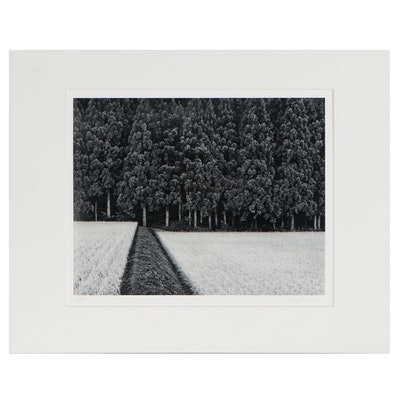 "John Sexton Silver Gelatin Photograph ""Rice Field and Pine Forest,"" 1985"