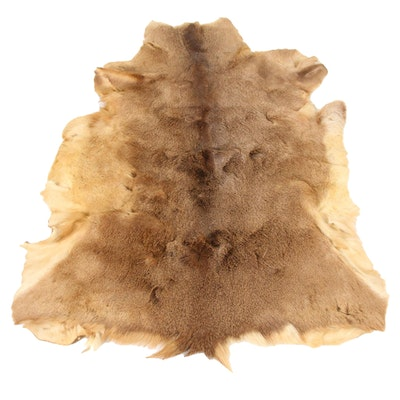 2'9 x 4'5 Natural Tanned White Tail Deer Hide