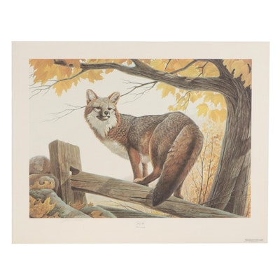 "John A. Ruthven Offset Lithograph ""Gray Fox,"" 1980"