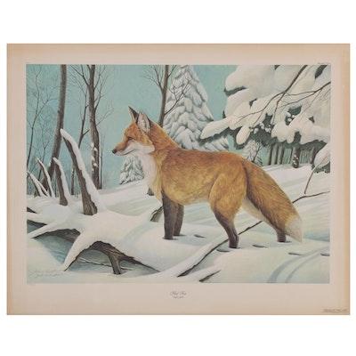 """John A. Ruthven Offset Lithograph """"Red Fox,"""" 1979"""