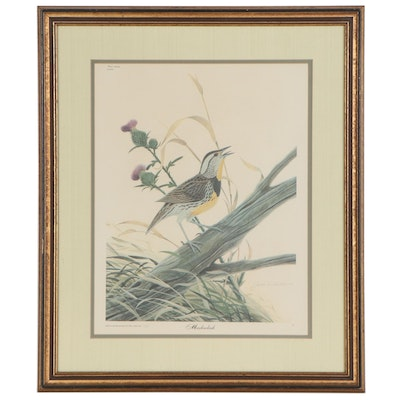 """Offset Lithograph after John A. Ruthven """"Meadowlark,"""" Late 20th Century"""