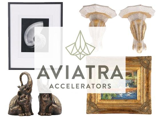 Aviatra Accelerators Fundraising Auction