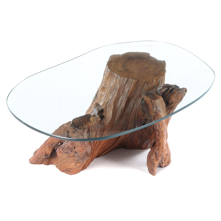 Bald Cypress Stump with Knees and Custom Shaped Glass Top Coffee Table